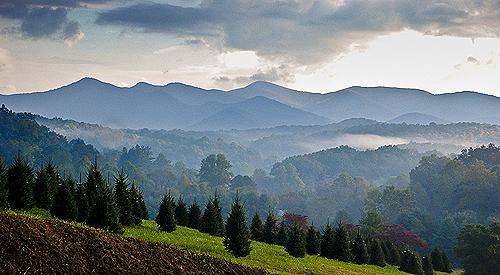 blairsville-mountain-views-treefarm